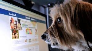 1 δισ. χρήστες χρησιμοποιούν το Facebook καθημερινά